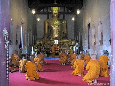 Monks chant at Wat Sao Tong Thong Lopburi
